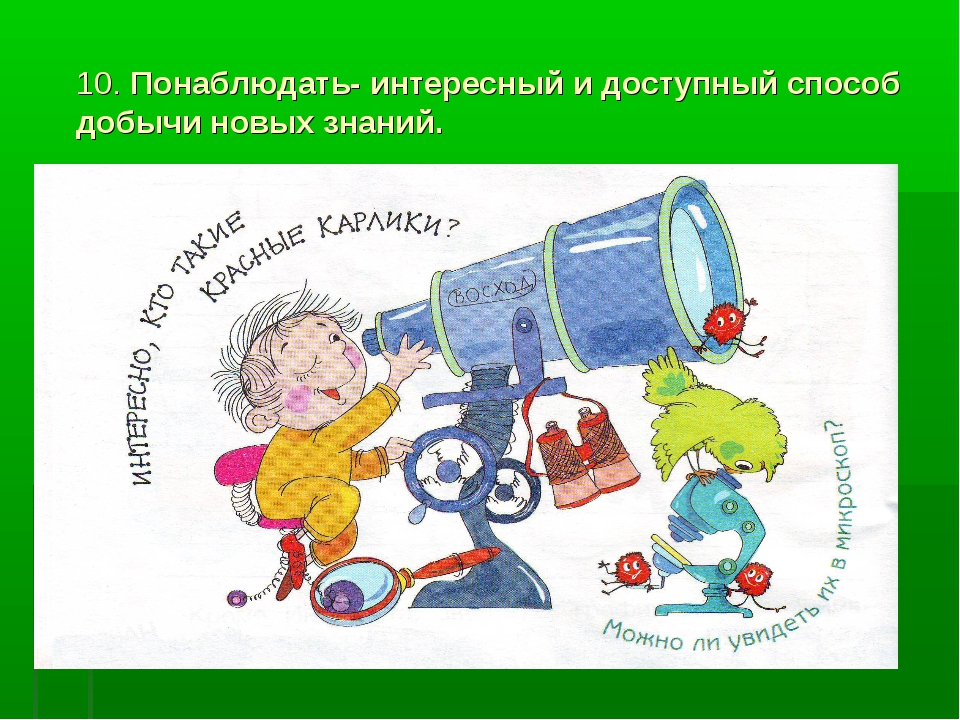 10. Понаблюдать- интересный и доступный способ добычи новых знаний.