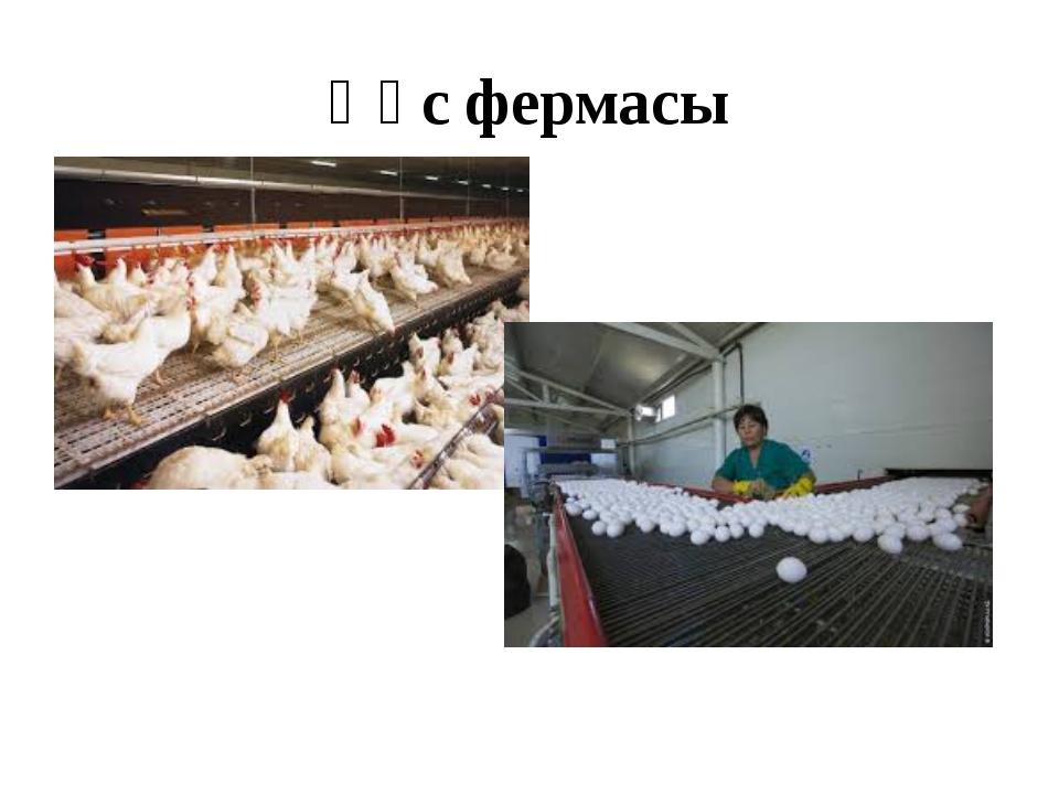 Құс фермасы