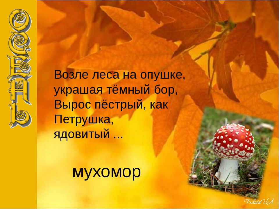 мухомор Возле леса на опушке, украшая тёмный бор, Вырос пёстрый, как Петрушка...