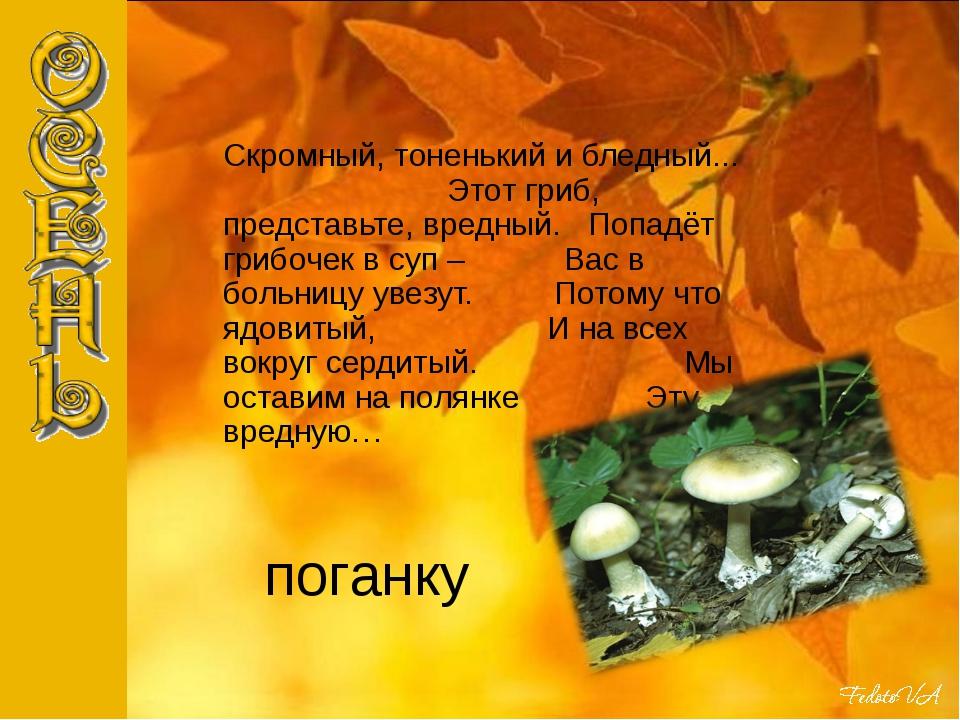 поганку Скромный, тоненький и бледный... Этот гриб, представьте, вредный. Поп...