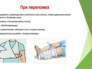 При переломах обездвижить поврежденную конечность или участок, любое движение