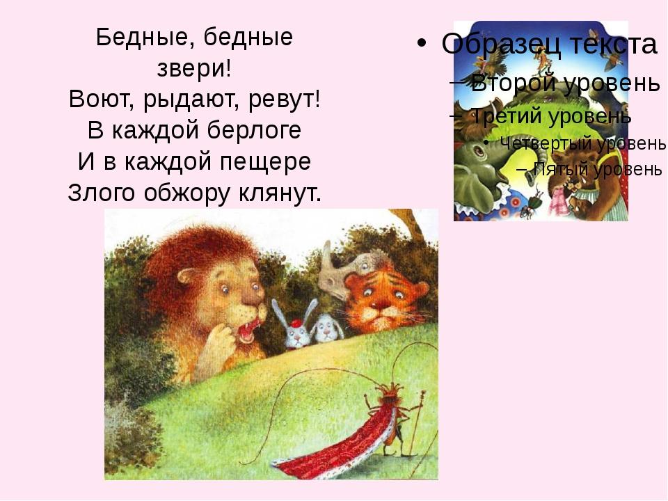 Бедные, бедные звери! Воют, рыдают, ревут! В каждой берлоге И в каждой пещере...