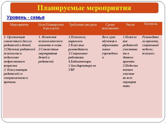 Уровень - семья Планируемые мероприятия МероприятиеЦель/Планируемый результа...
