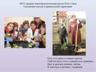 МОУ средняя общеобразовательная школа №10 г.Орла Озеленение школы и пришкольн