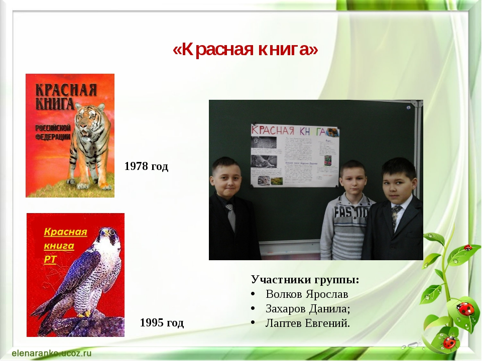 «Красная книга» 1978 год 1995 год Участники группы: Волков Ярослав Захаров Да...