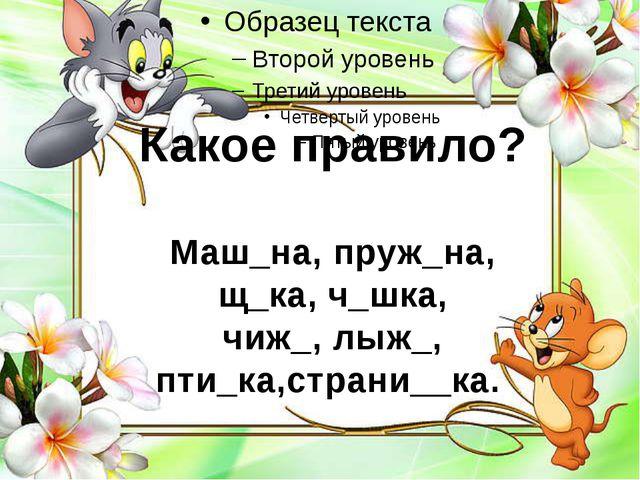 _ Какое правило? Маш_на, пруж_на, щ_ка, ч_шка, чиж_, лыж_, пти_ка,страни__ка.