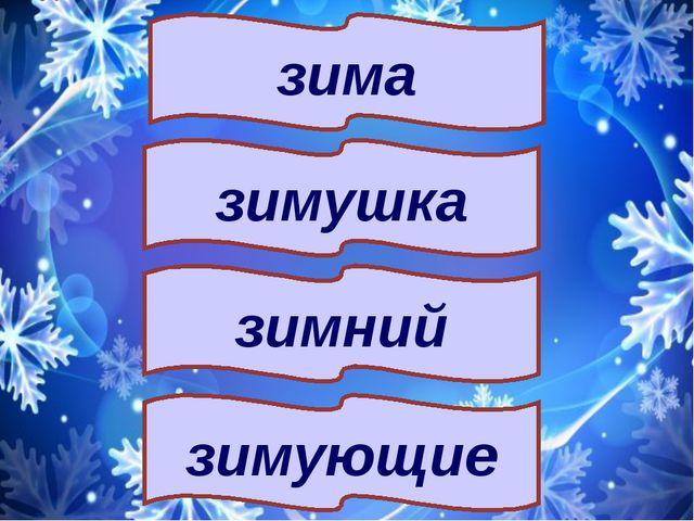 зимний зима зимушка зимующие
