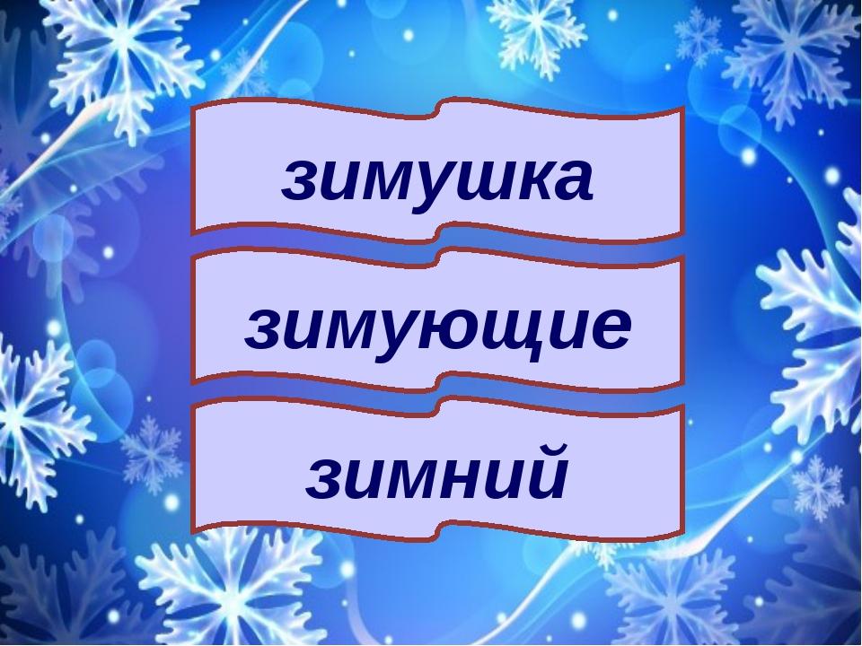 зимний зимушка зимующие