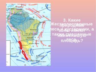 3. Какие природные зоны имеют наименьшую площадь? Жестколиственные леса и кус