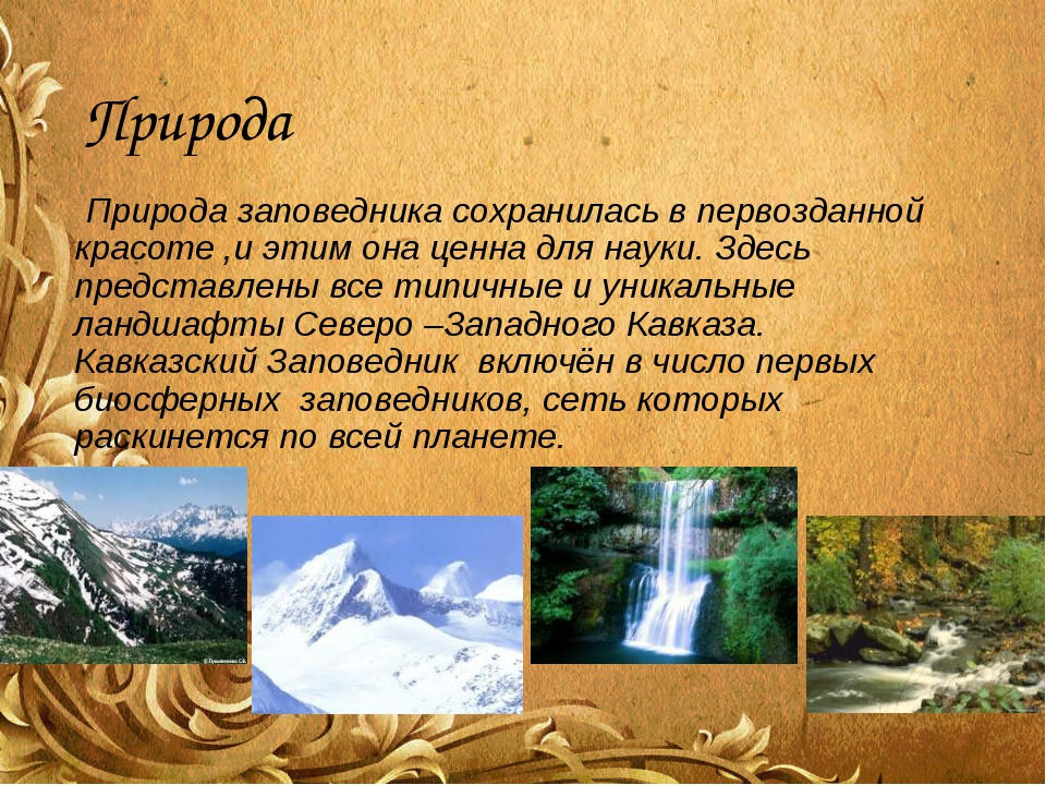 Природа Природа заповедника сохранилась в первозданной красоте ,и этим она це...
