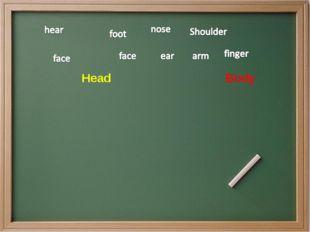 Head  Body