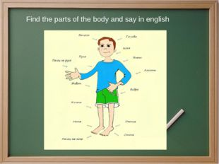 Find the parts of the body and say in english