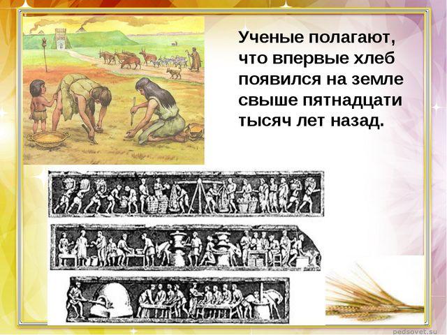 Ученые полагают, что впервые хлеб появился наземле свыше пятнадцати тысяч ле...