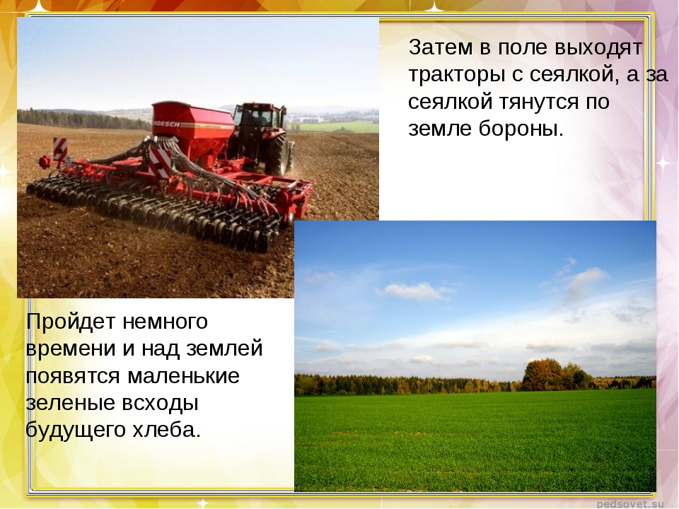 Затем в поле выходят тракторы с сеялкой, а за сеялкой тянутся по земле бороны...