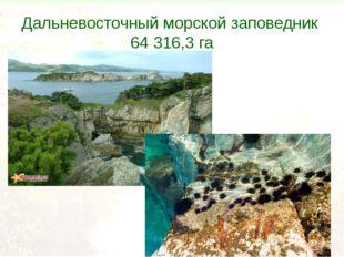 Дальневосточный морской заповедник 64 316,3 га