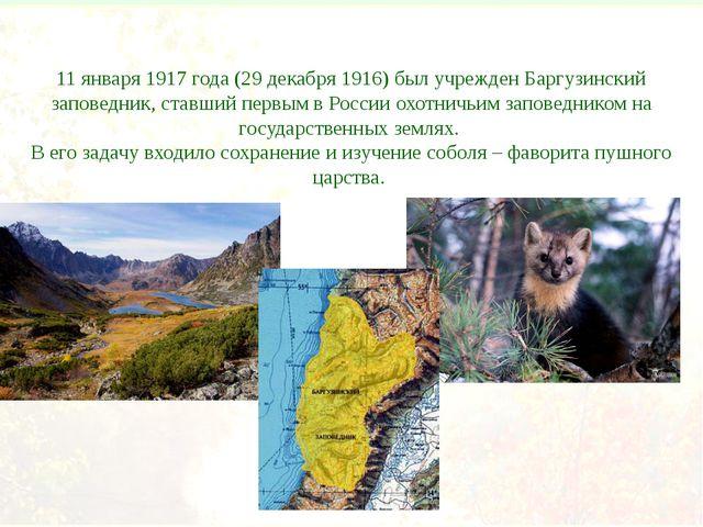 11 января 1917 года (29 декабря 1916) был учрежден Баргузинский заповедник, с...