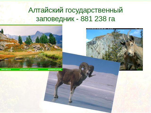 Алтайский государственный заповедник - 881 238 га