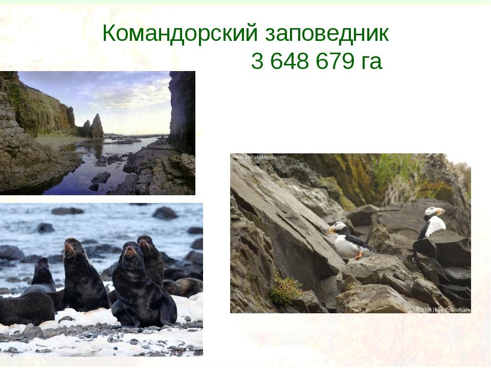 Командорский заповедник 3648679 га