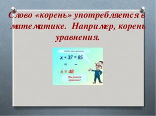 Слово «корень» употребляется в математике. Например, корень уравнения.