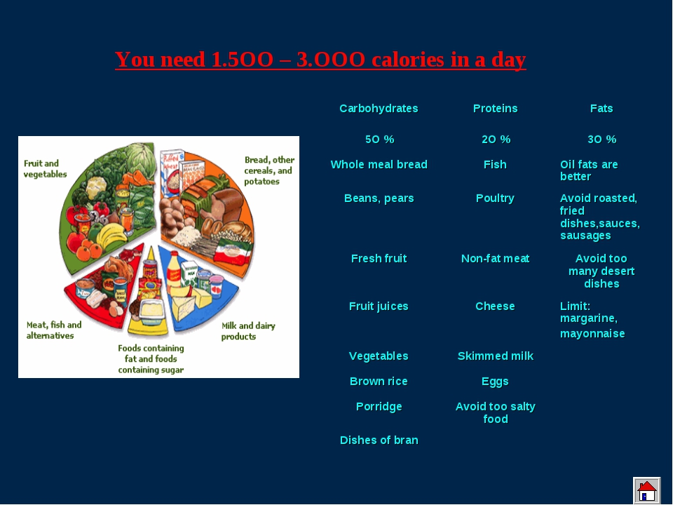 You need 1.5OO – 3.OOO calories in a day CarbohydratesProteinsFats 5O %2O...