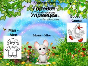 Городок Упрямцев Man - Men Mouse–Mice Goose – Geese