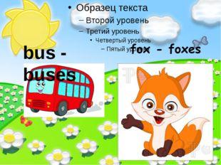 bus - buses