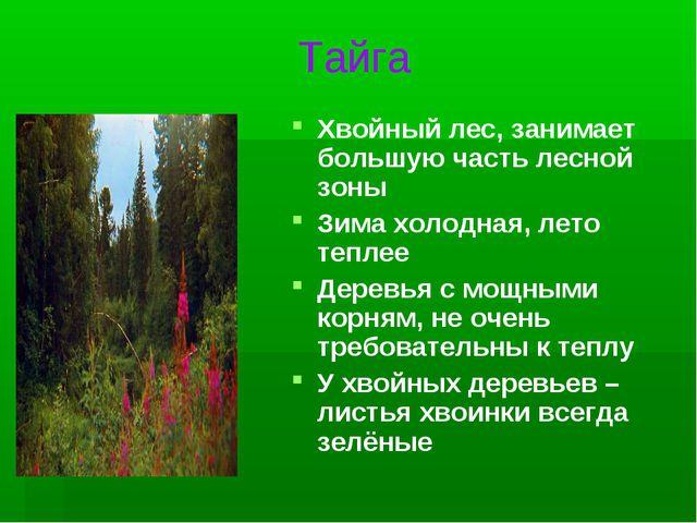 Тайга Хвойный лес, занимает большую часть лесной зоны Зима холодная, лето теп...