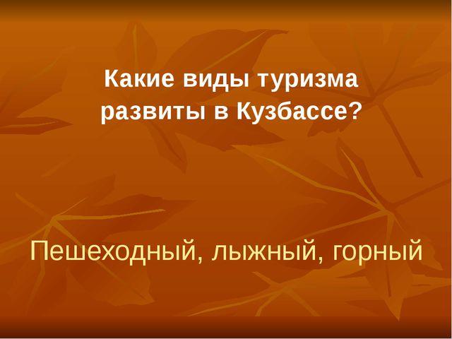 Какие виды туризма развиты в Кузбассе? Пешеходный, лыжный, горный