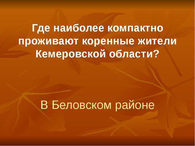 Где наиболее компактно проживают коренные жители Кемеровской области? В Белов...