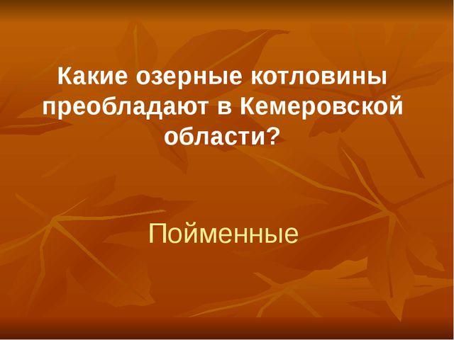 Какие озерные котловины преобладают в Кемеровской области? Пойменные
