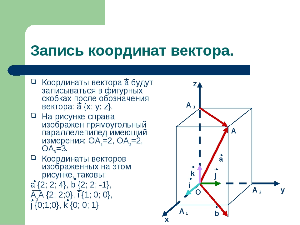 Запись координат вектора. Координаты вектора а будут записываться в фигурных...