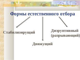Формы естественного отбора Движущий Дизруптивный (разрывающий) Стабилизирущий