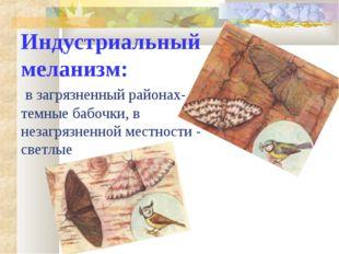 Индустриальный меланизм: в загрязненный районах- темные бабочки, в незагрязне