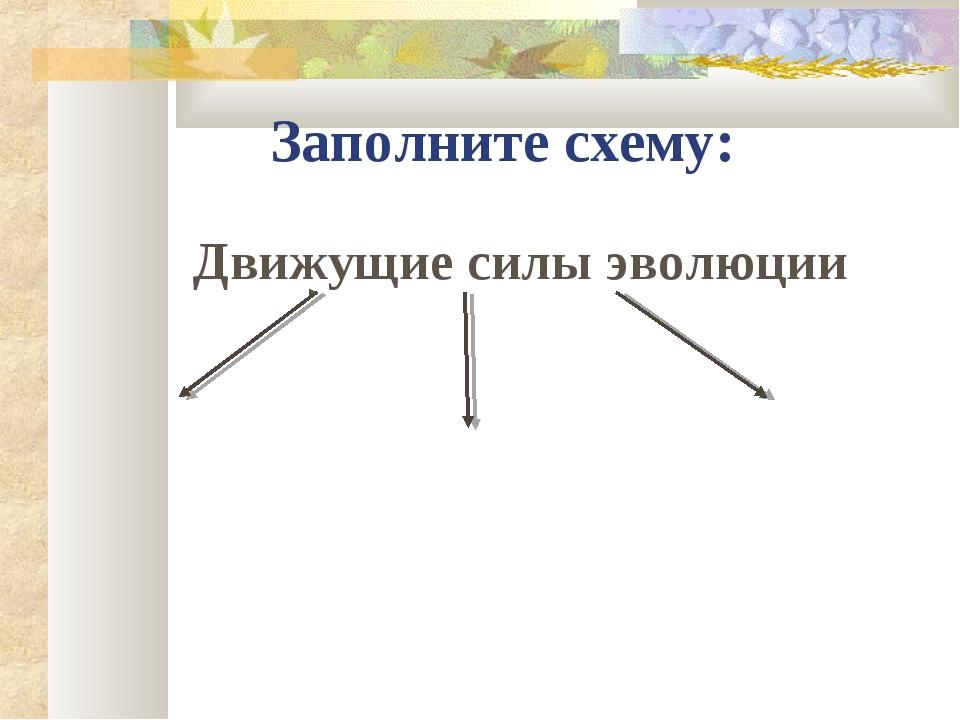 Заполните схему: Движущие силы эволюции