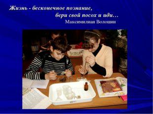 Жизнь - бесконечное познание, бери свой посох и иди… Максимилиан Волошин