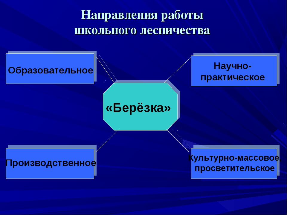 Направления работы школьного лесничества «Берёзка» Образовательное Научно- пр...