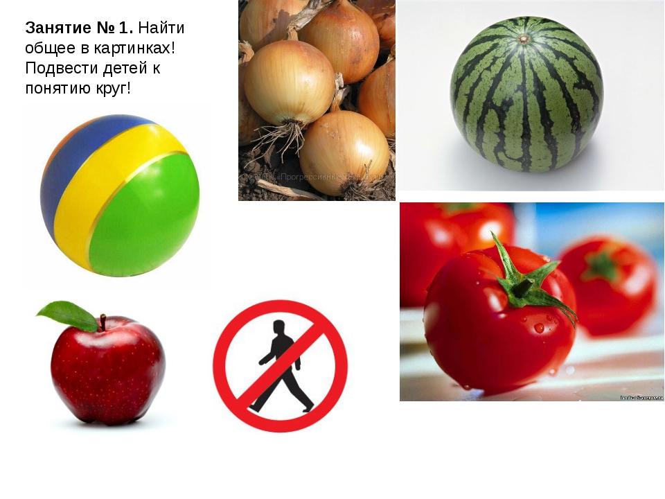 Занятие № 1. Найти общее в картинках! Подвести детей к понятию круг!