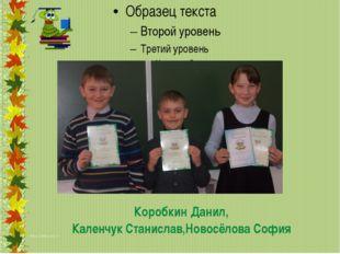 Коробкин Данил, Каленчук Станислав,Новосёлова София