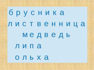 б р у с н и к а л и с т в е н н и ц а м е д в е д ь  л и п а  о л ь х а