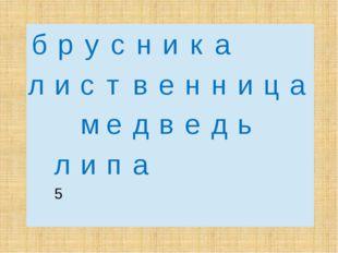 б р у с н и к а л и с т в е н н и ц а м е д в е д ь  л и п а  5