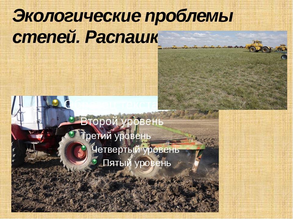 Экологические проблемы степей. Распашка земель