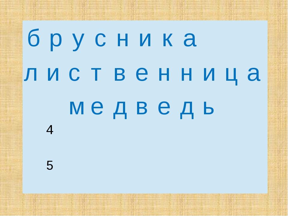 б р у с н и к а л и с т в е н н и ц а м е д в е д ь  4  5