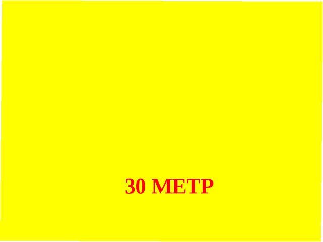 30 МЕТР ҚАШЫҚТЫҚҚА ЖҮГІРУ (5МИН)