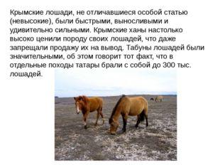 Крымские лошади, не отличавшиеся особой статью (невысокие), были быстрыми, вы