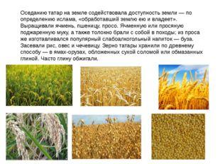 Оседанию татар на земле содействовала доступность земли — по определению исла