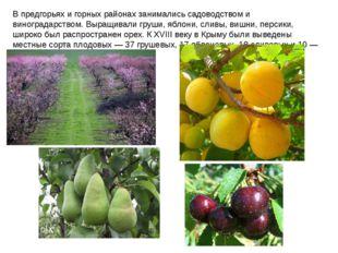 В предгорьях и горных районах занимались садоводством и виноградарством. Выра