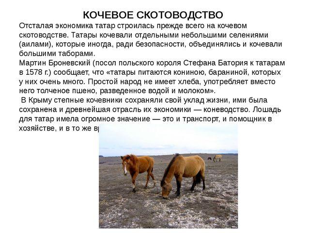 СКОТОВОДСТВО На таком обширном пространстве с XIII века и кочевали татары — с...