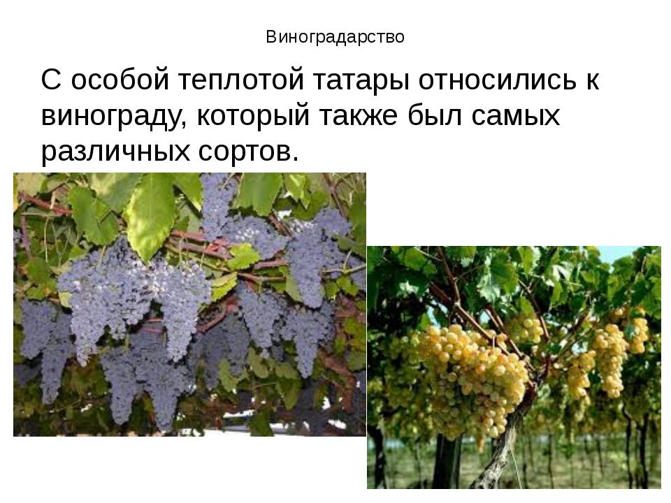 Виноградарство С особой теплотой татары относились к винограду, который также...
