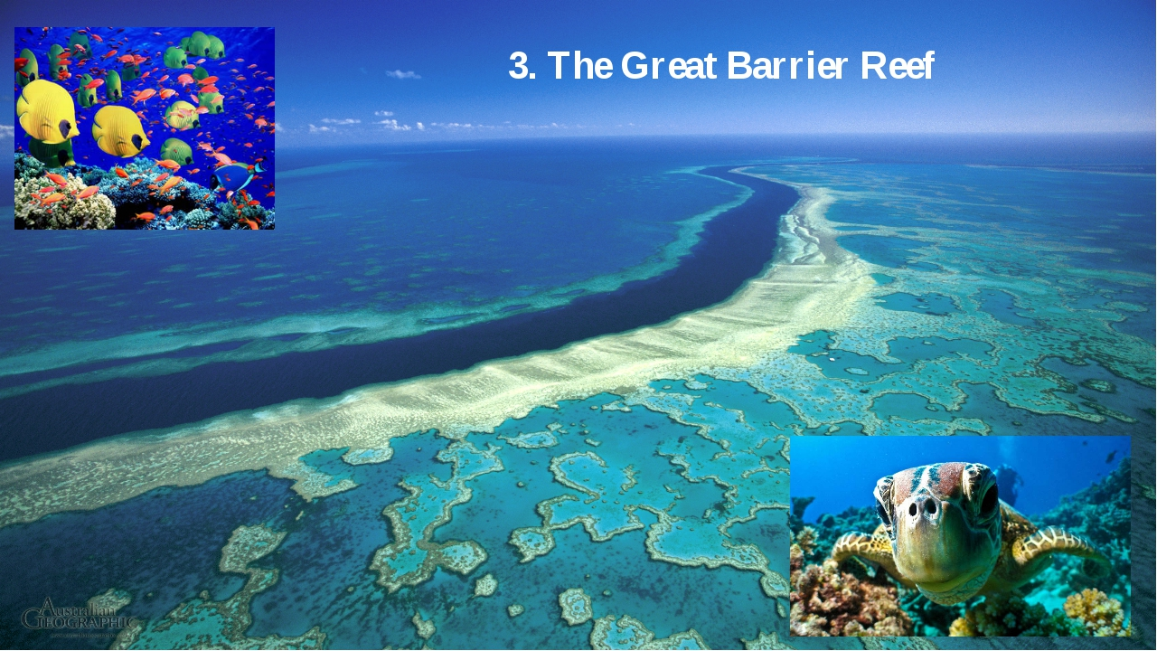 3. The Great Barrier Reef
