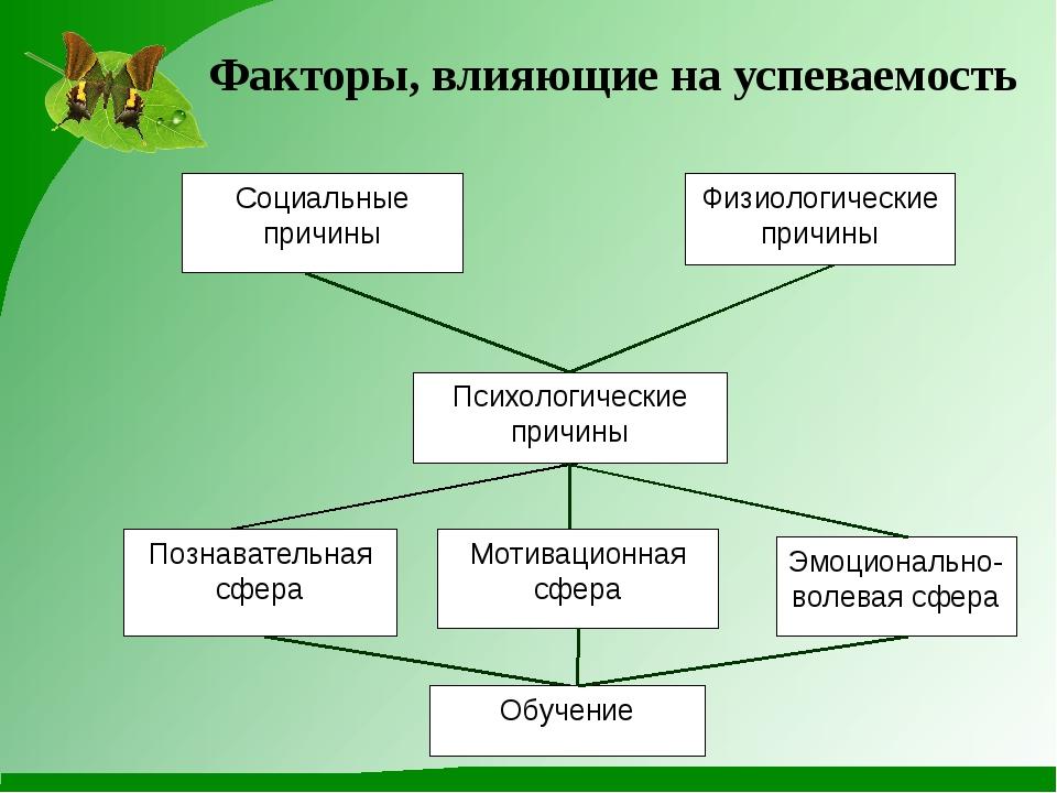 Факторы, влияющие на успеваемость Социальные причины Физиологические причины...